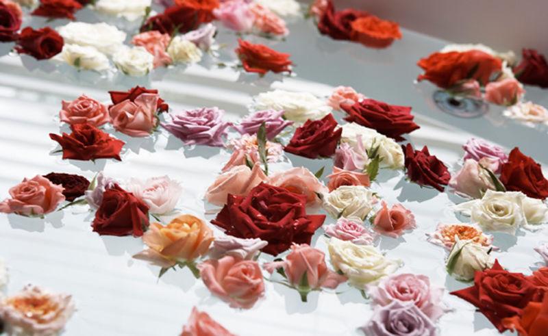 【ローズバス】薔薇の香りにつつまれて・・・ワンランク上の楽しみを♪ セレブローズ